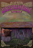 Widespread Panic Video